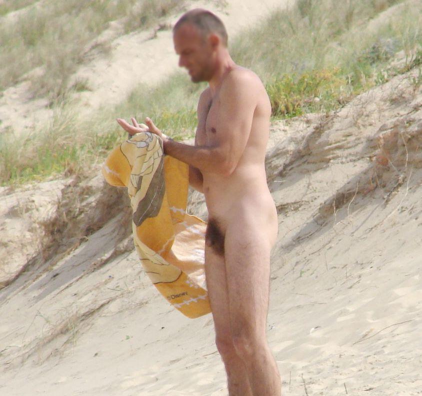 average adult male penis size
